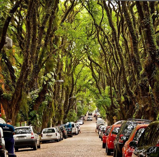 Rua Goncalo de Carvalho of Brazil