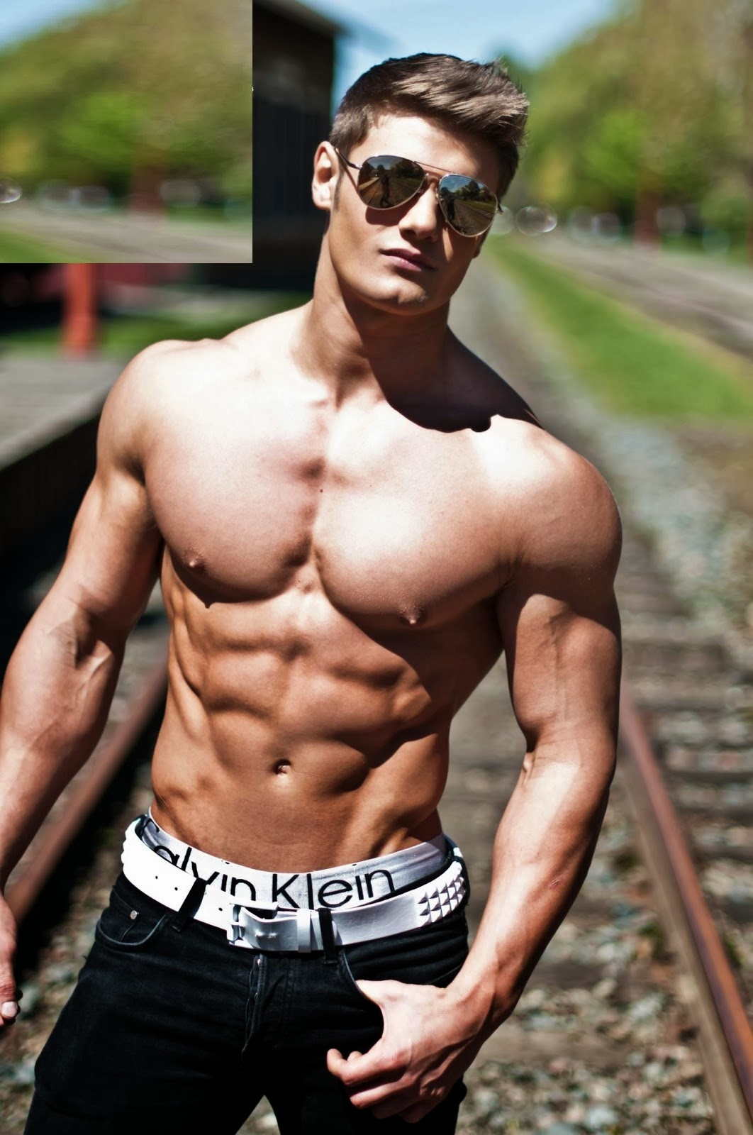 Jeff Seid- Male Fitness Model