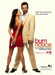 Ver Burn notice: the fall of sam axe Online