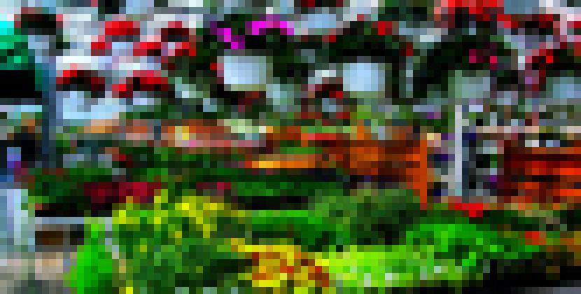 Digital Hortorium