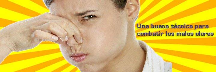 Como eliminar mal olor a gasolina del maletero del coche - Como eliminar los malos olores ...