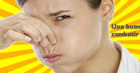 Como eliminar mal olor a gasoil del maletero del coche - Como quitar malos olores ...