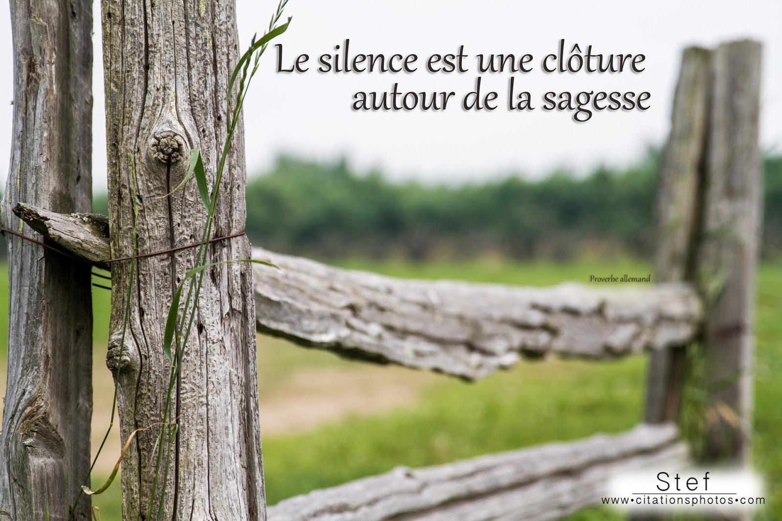 """"""" Prénom à Féter et Ephémérides du Jour """" - Page 9 _silence+une+cloture+autour+sagesse"""