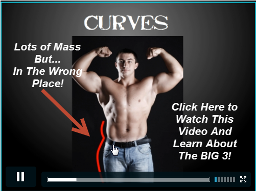 http://dopily.com/download-visual-impact-muscle-building