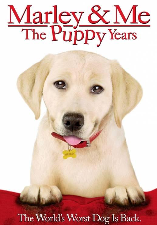Marley y yo 2: Los años del perrito (Una pareja de tres: Los años cachorros) (2011) Español Latino