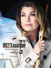 Grey's Anatomy 12 Episode 6
