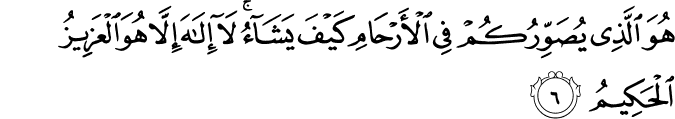 Surat Ali Imran Ayat 6