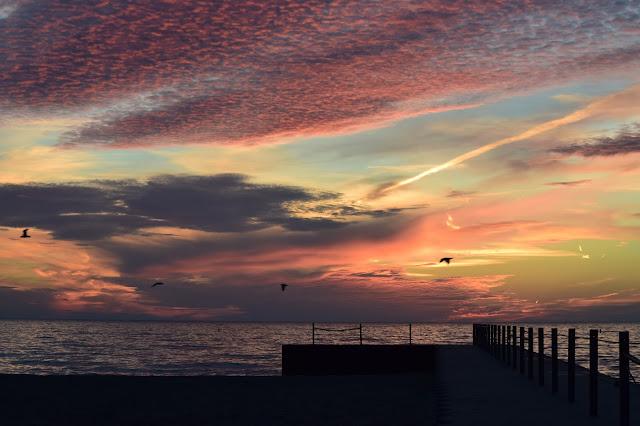 Rogers Park, sunrise, Chicago, Lake Michigan, Floradise