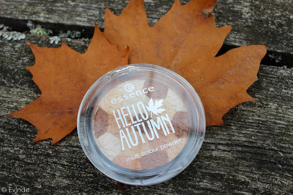 Essence Hello Autumn Multi Colour Powder   Autumn U0026 The City