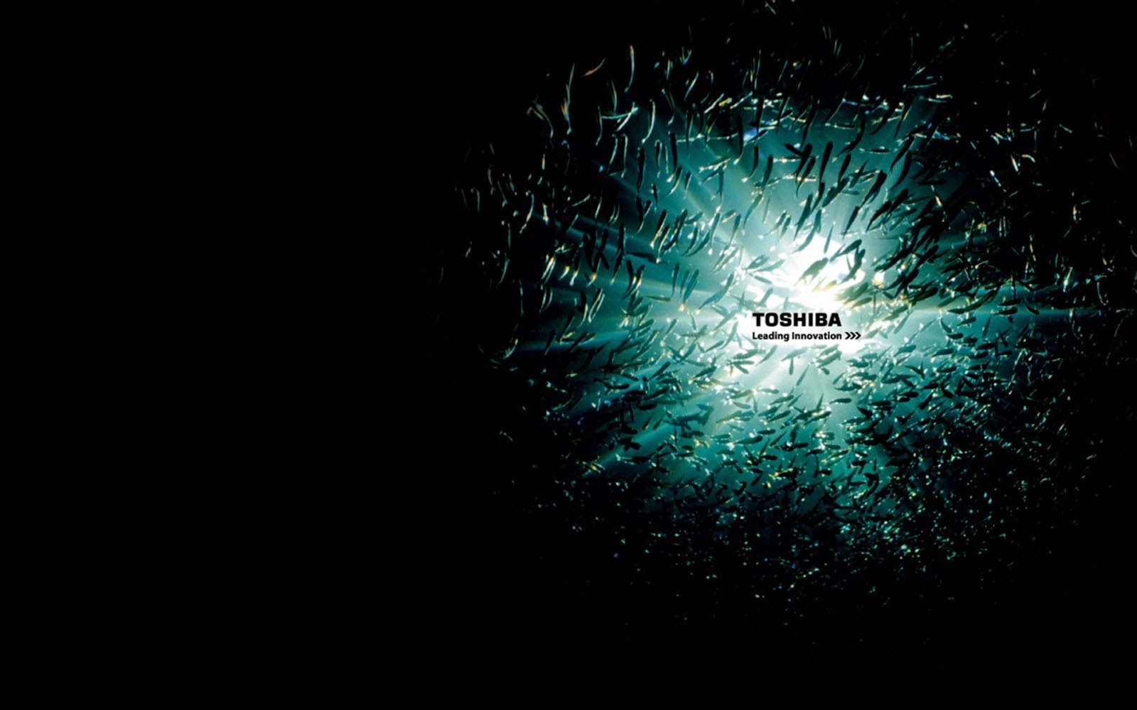 <b>Toshiba Background Wallpaper</b> #7033060