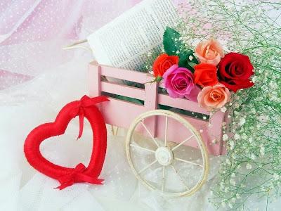 Màu hoa hồng nào tượng trưng cho tính cách của bạn?