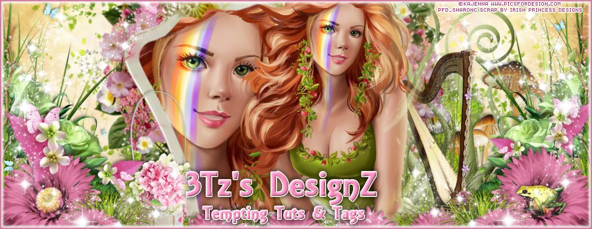 3Tz's DesignZ