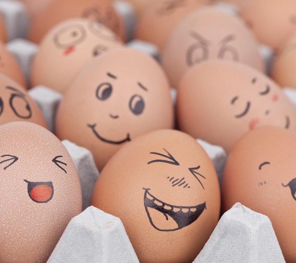 Humour  blagues, bêtisiers, images et vidéos délirantes... sur :)