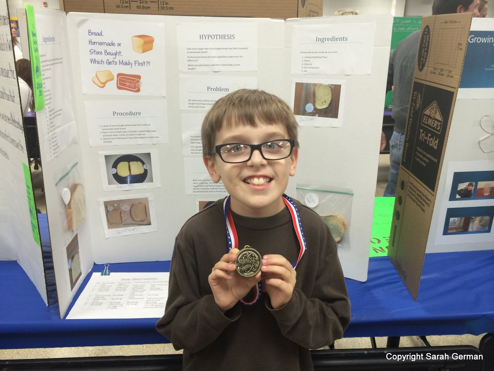 mold science project If you're looking for an interesting science fair project, then you may want to read more about bread mold science fair projects that you can do they are easy and inexpensive to do but also allow you to follow all the steps of the scientific method.