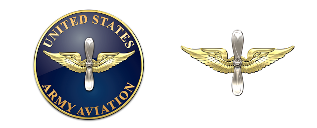 Flying Branch Of The Military  And  Letters