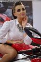 Thumb of Zdjęcia: 7 Wystawa Motocykli i Skuterow Photo(147)