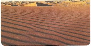La zona del Pinacate y Gran Desierto de Altar es considerada una región prioritaria de México, ya que contiene una gran riqueza biológica y la mayor diversidad de los cuatro desiertos de Norteamérica.