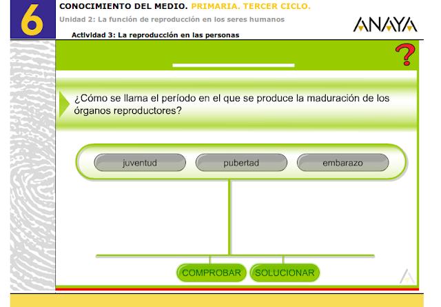 http://www.ceipjuanherreraalcausa.es/Recursosdidacticos/SEXTO/Conocimiento/u02/0203.htm