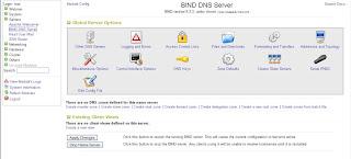 How to setup DNS with Webmin