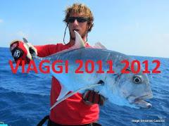 Programmi viaggio 2011 2012