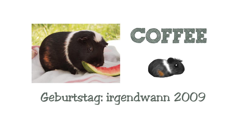 http://wutzdoc.blogspot.de/2013/09/noch-mehr-coffein.html