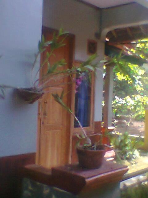 GEMBALA TERNAK: Membuat Pot Bunga Dari Semen