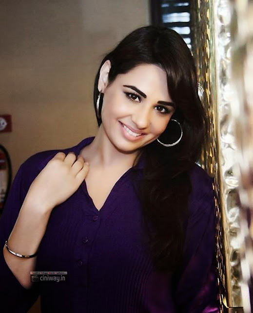 Biriyani Heroine Actress Mandy Takhar Photoshoot