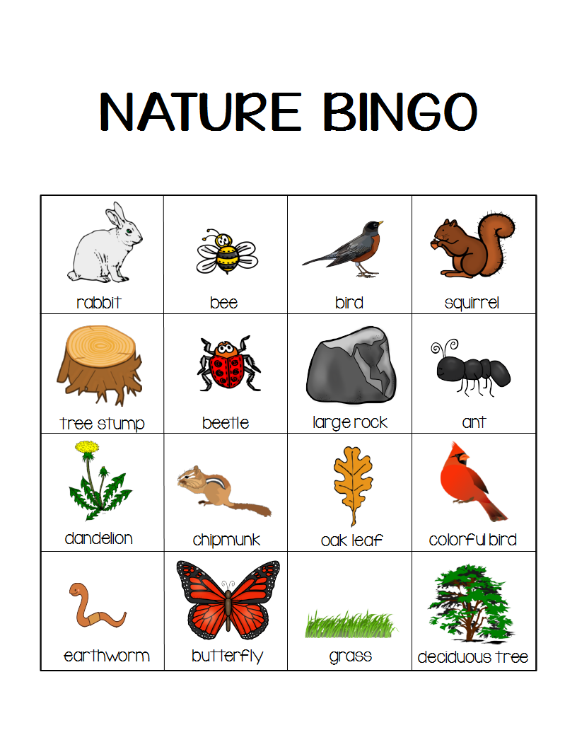 Nature Bingo Printable Activity Take A Hike With Your Kids Momgineer