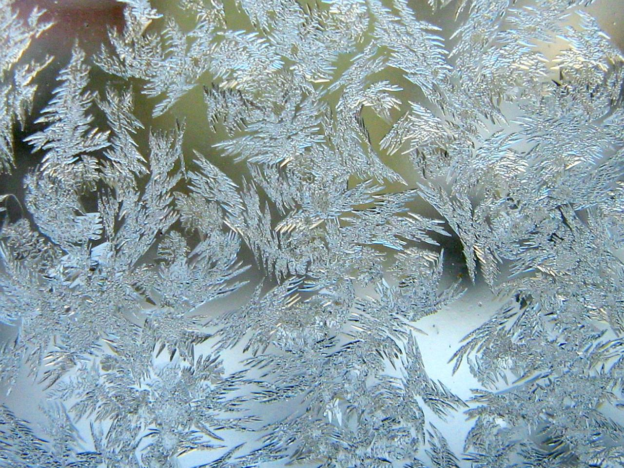 frost on glass wallpapers - photo #19