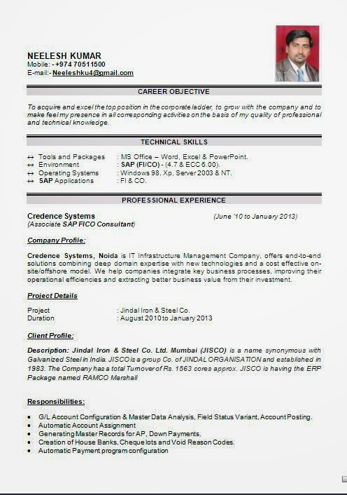Resume Format For Sap Fico Freshers - nmdnconference.com - Example ...
