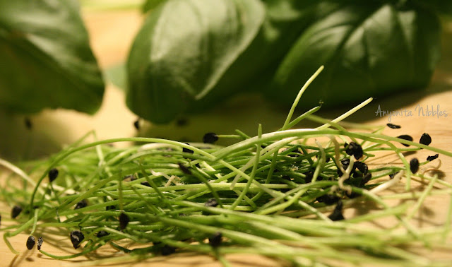 fresh garlic chives and fresh basil on a cutting board