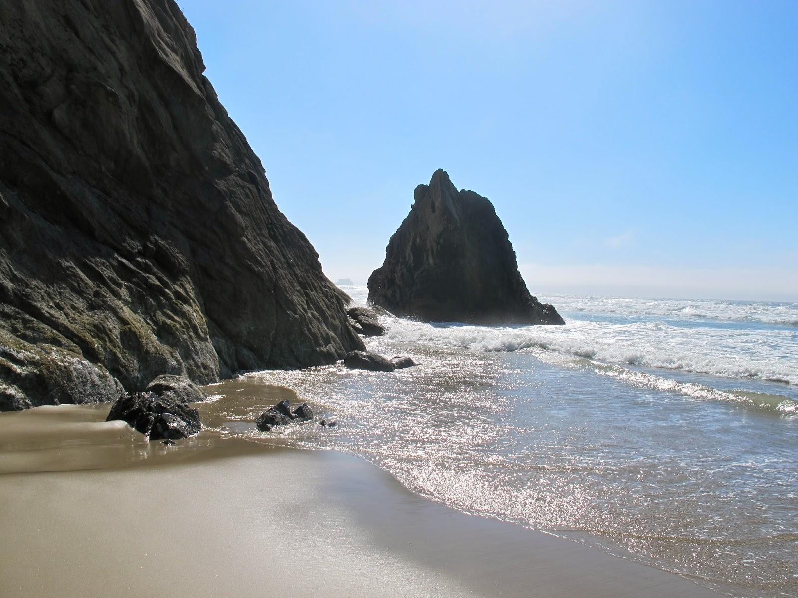 Big Dog Seaside Oregon
