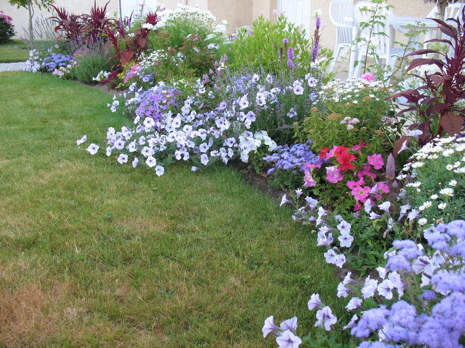 Roses du jardin ch neland ag ratum - Ou planter la rhubarbe dans le jardin ...