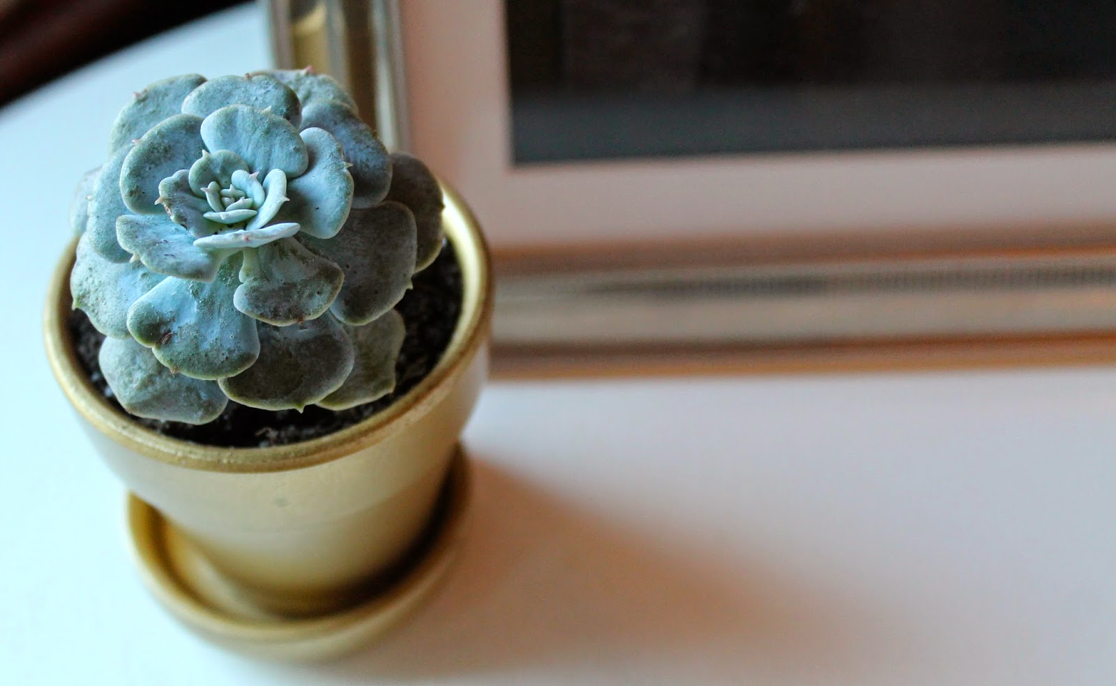 RedWoodStoneWorks Gold Miniature Succulent Pot