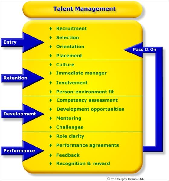 The Role of HR in Talent Management