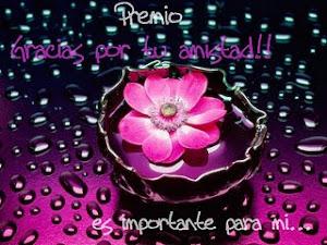 Premio de Nuria Ruesta