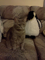 Blurry photo of a grey tabby cat with a stuffed penguin on a beige & grey couch