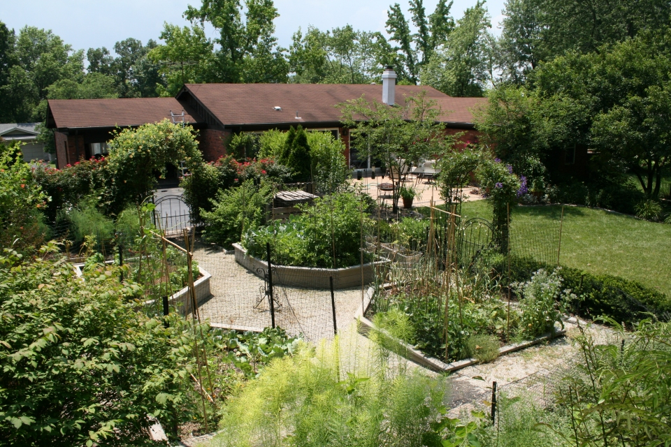 home vegetable garden designs wallpapers pictures
