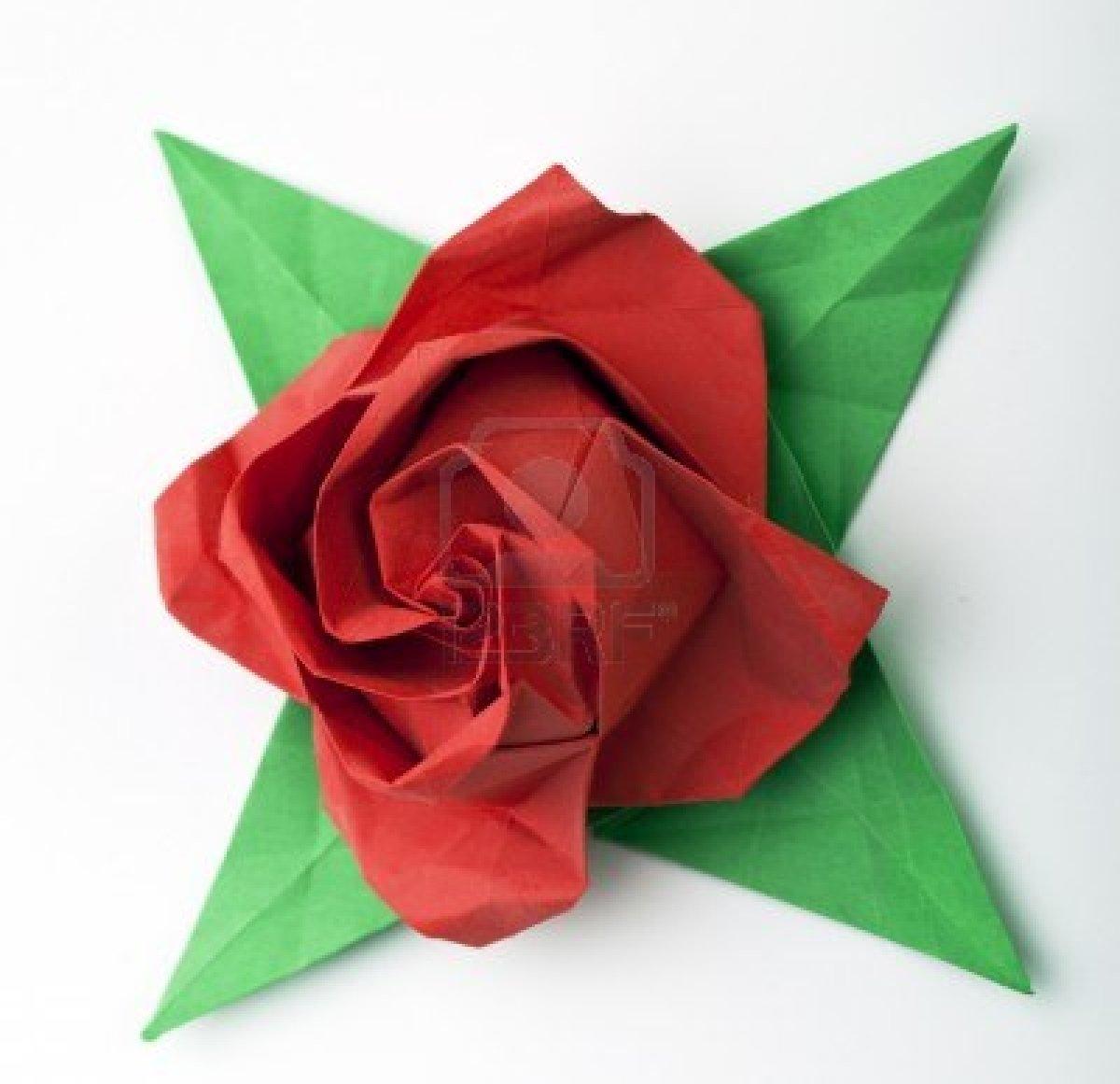 Studio Floral Dora Santoro: Origami - photo#23