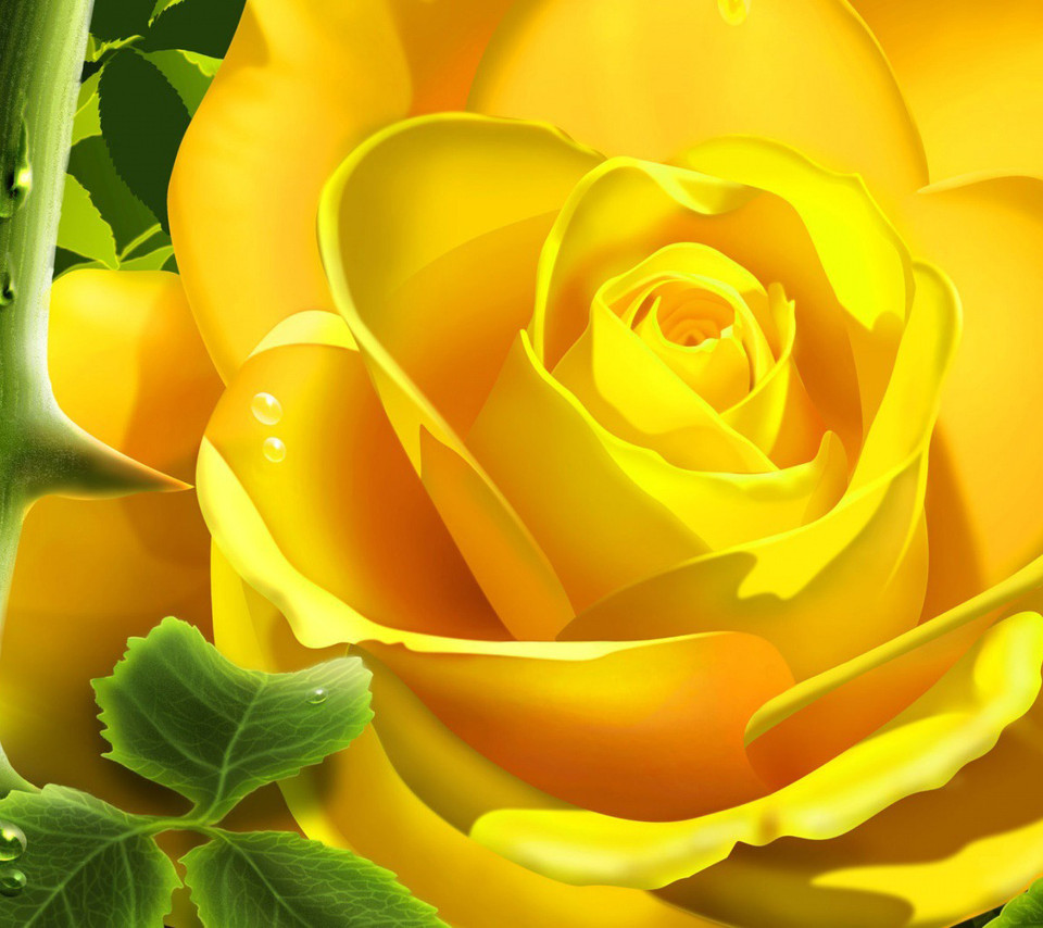 Flowers For Flower Lovers.: Flowers Wallpapers Desktop