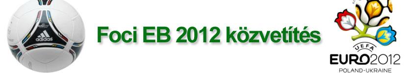 Foci EB 2012 Online