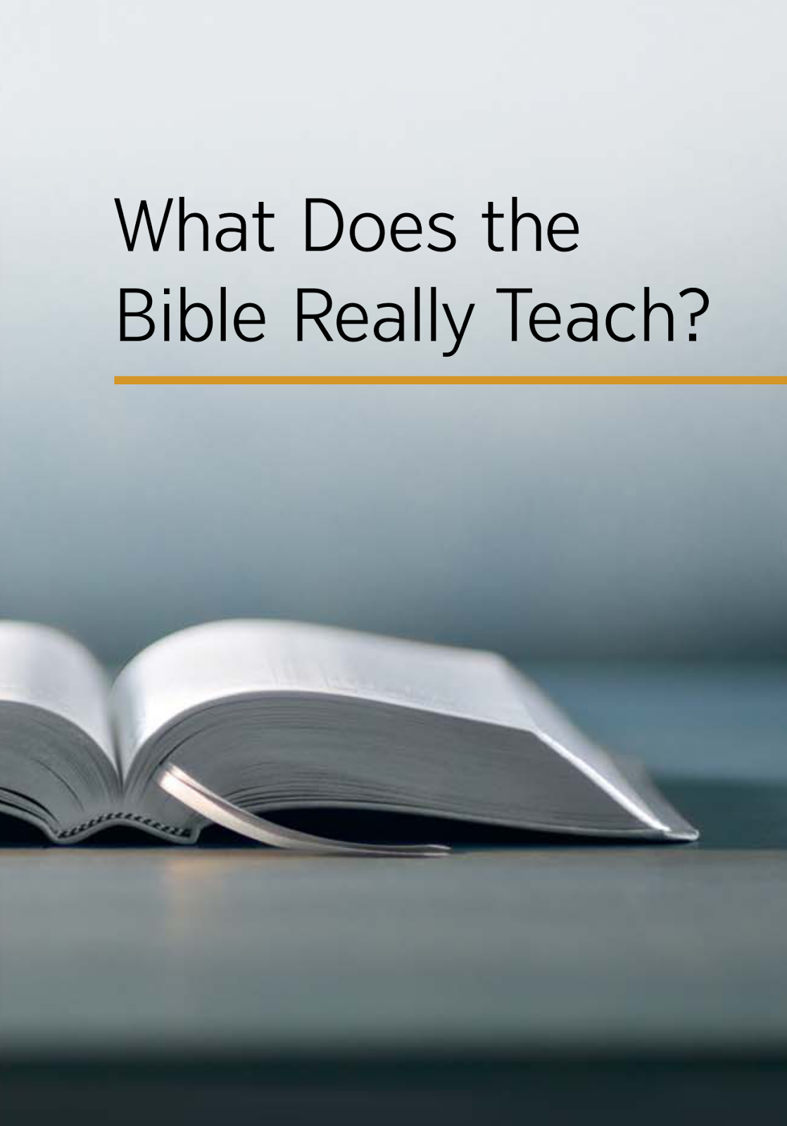 essay bible means me Free bible papers, essays, and research papers these results are sorted by most relevant first (ranked search) you may also sort these by color rating or essay length.