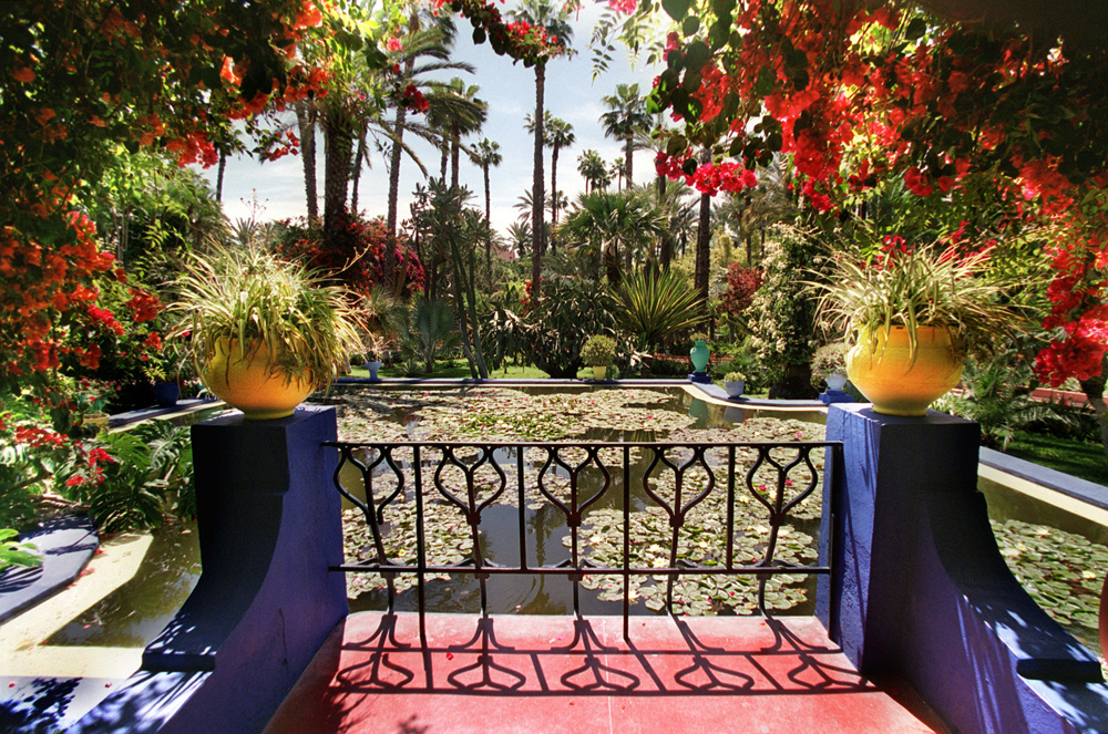 The view from fez creative director for the jardin for Jardin ysl marrakech