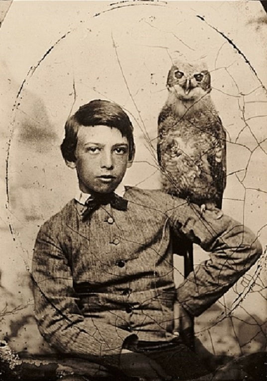It's About Time: A boy & his owl - budding American artist ...