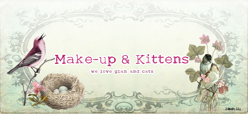 MAKE-UP & KITTENS