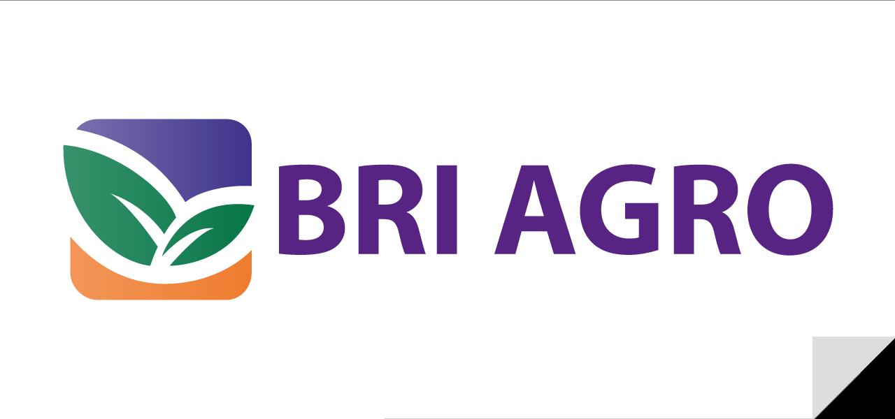 Lowongan Kerja PT Bank Rakyat Indonesia Agroniaga Tbk