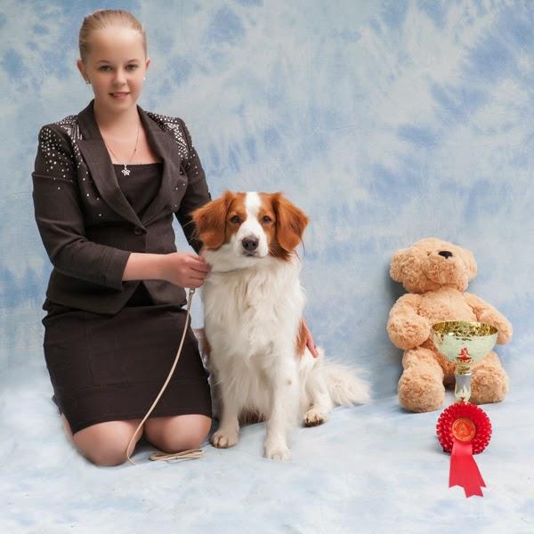 Spanieliliiton 50v juhlanäyttelyn palkittu junioriesittäjä koiransa kanssa