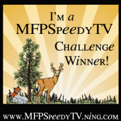 MFP Stamps Challenge Winner