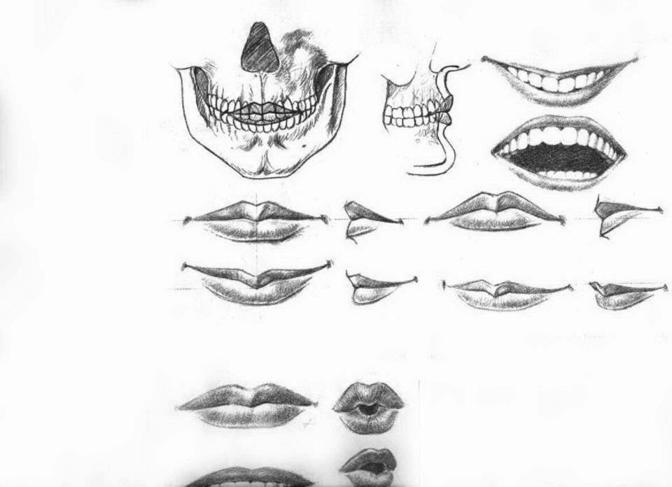 ف ن الر س م كيفية رسم الفم بالرصاص والفحم في اتجاهات و وضعيات