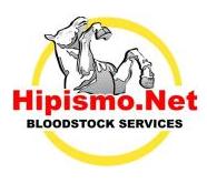 HIPISMO NET